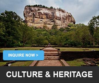 Cultural & Heritage LankaTourExperience