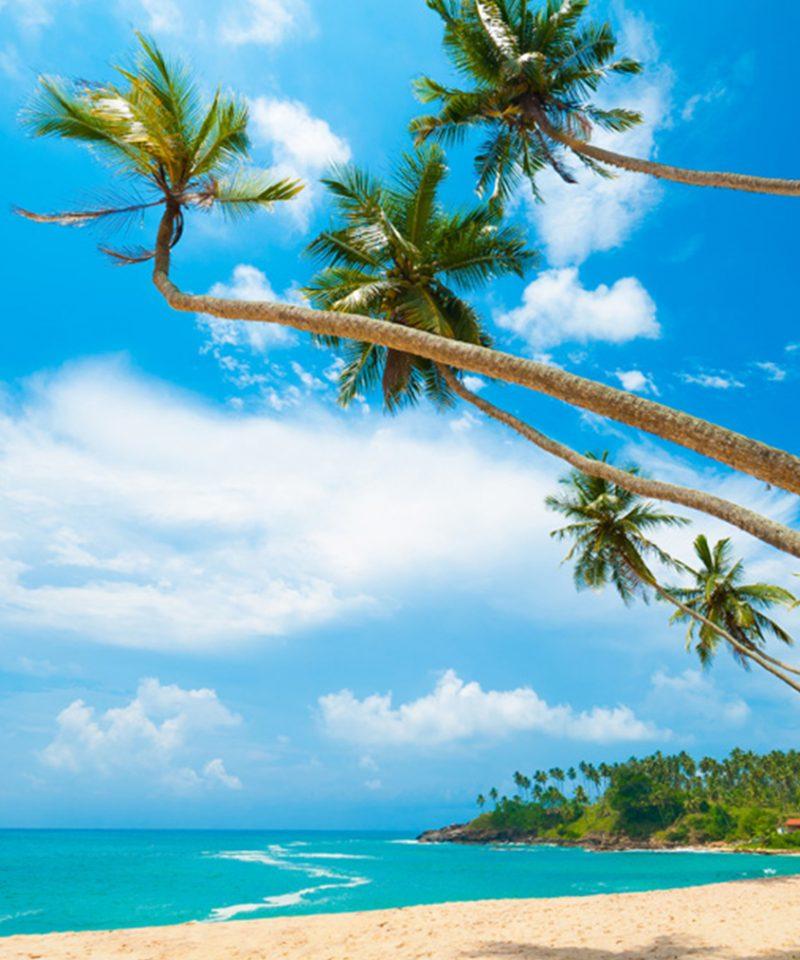 Beaches Srilanka