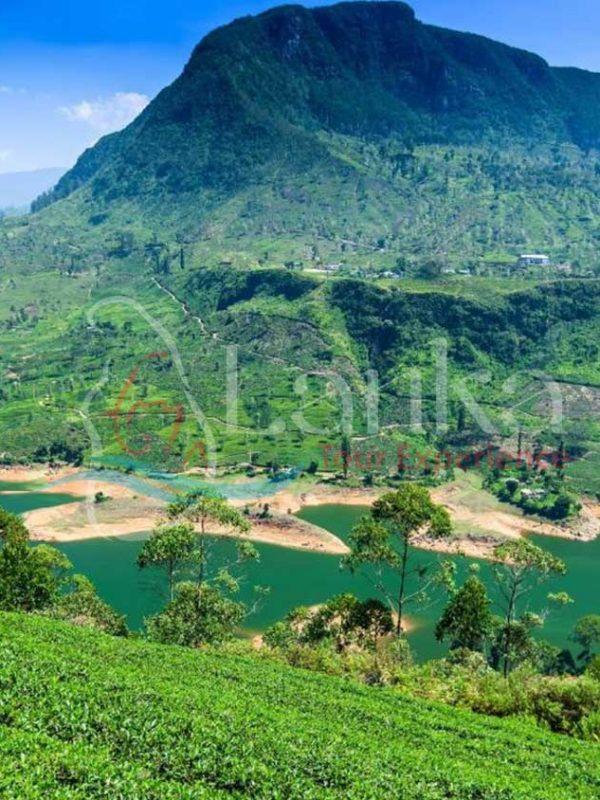 Beautiful landscape in Maskeliya, Sri Lanka