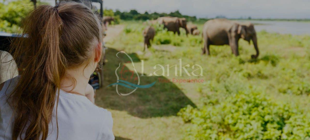 Family Safari 15D 14N
